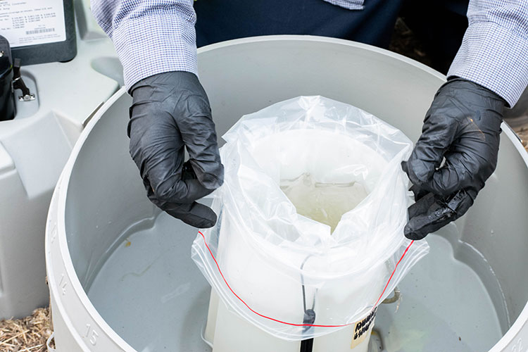 Gloved hands holding wastewater testing sample container